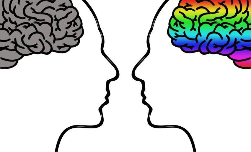 un cerveau en pleine forme