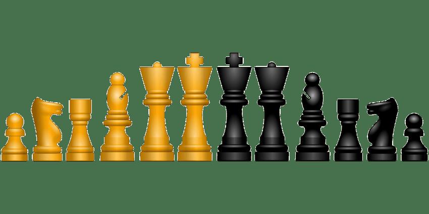 échecs Nathaniel Cook